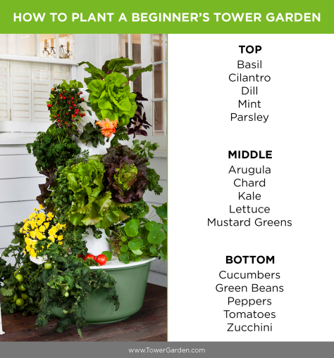 Tower Garden Beginner Plants