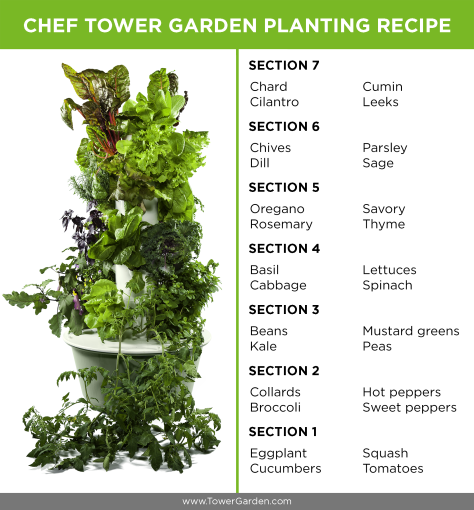 Planting Schematic for Chef Tower Garden