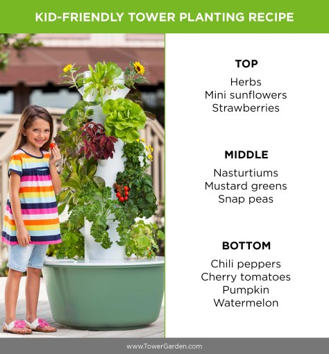 Kid Friendly Plants to Put in Tower Garden
