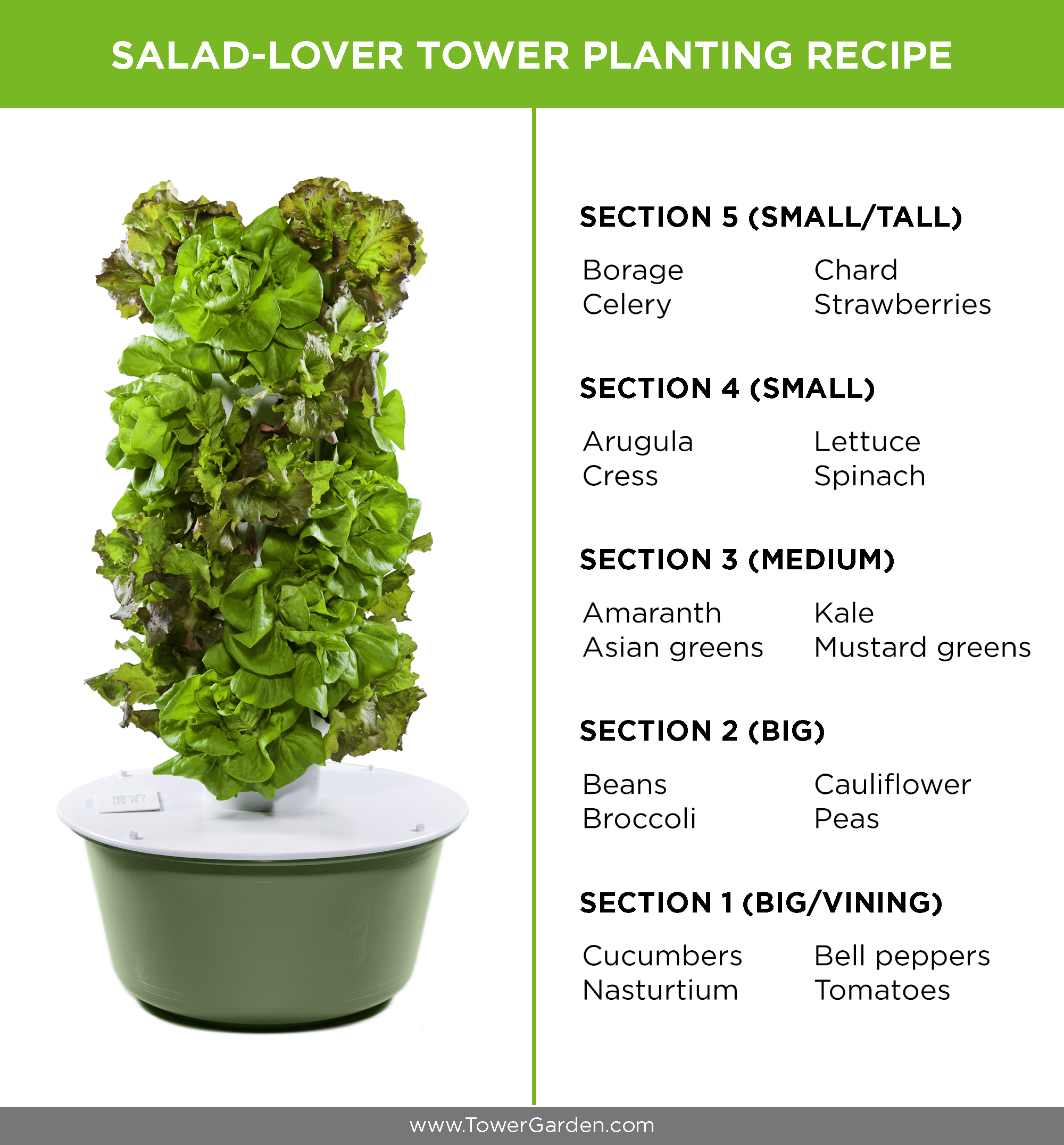 Salad Tower Garden Tower Planting Schematic