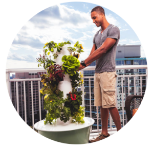 Harvesting the Tower Garden by JuicePlus+ City Gardening