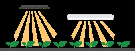 LED-vs-Fluorescent1-bigger-1080x410
