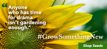 Grow Something New Shop Seeds